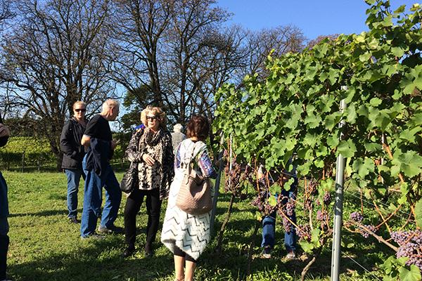 2017-spa--wine-vacation-in-southern-poland-and-krakow_38021682062_o